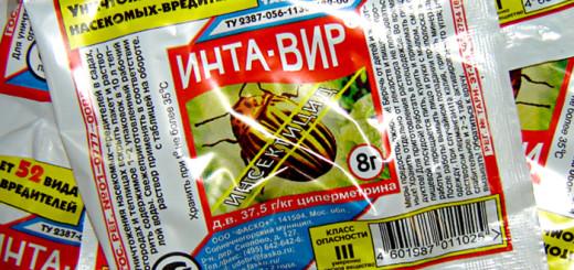Интра-вир - одно из средств для борьбы с мошками в цветах