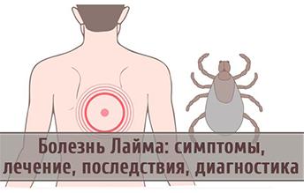 Клещевой боррелиоз (болезнь Лайма) симптомы и лечение у