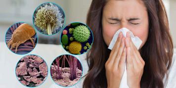 Аллергия на бытовую пыль