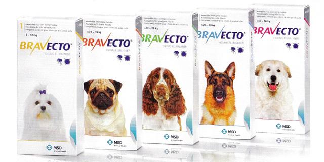 Таблетки от клеща для собаки
