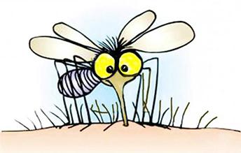 kak-izbavitsya-ot-komarov-v-kvartire3