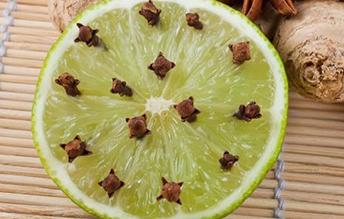 limon-s-gvozdikoy-ot-komarov1